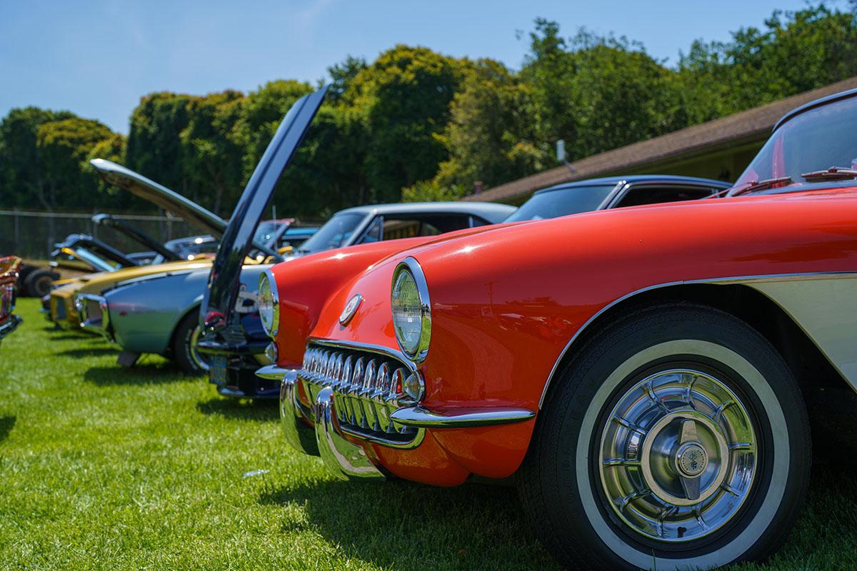 Hot Rod's Car Show